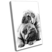 Pug Puppies Dog Animals - 13-1646(00B)-SG32-PO